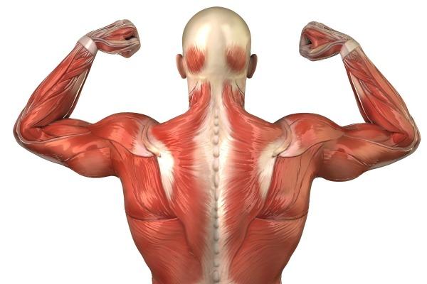 houston chiropractor treatment