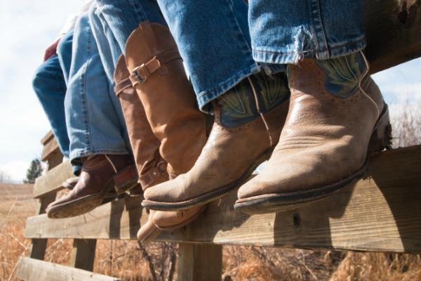 cowboy fans